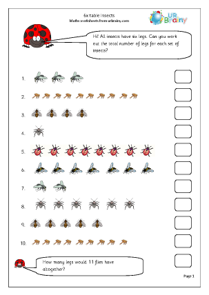 6x table Insects