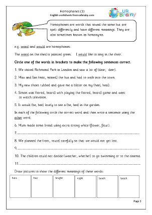 Preview of worksheet Homophones 1