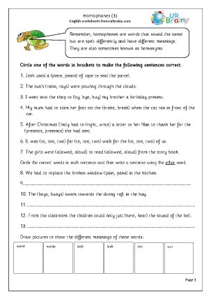 Preview of worksheet Homophones 3