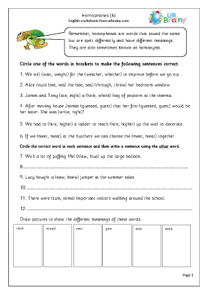 Preview of worksheet Homophones 4