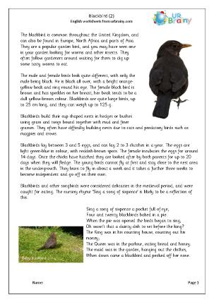 Blackbird - Harder