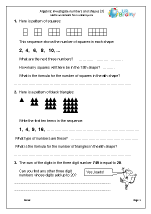 Investigate Numbers and Shapes using Algebra (3)