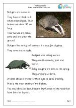 Badgers (1)