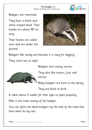 Preview of worksheet Badgers (1)