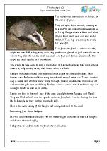Badgers (2)