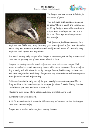 Preview of worksheet Badgers (2)