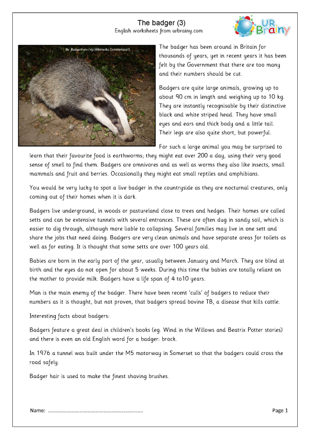 Preview of 'Badgers (3)'