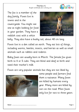 Preview of worksheet Foxes (1)