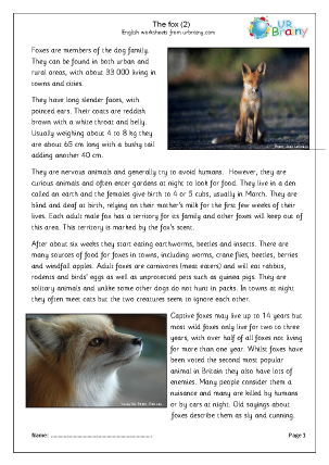 Preview of worksheet Foxes (2)