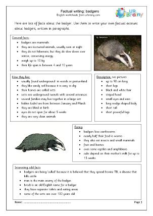 Preview of worksheet Badgers