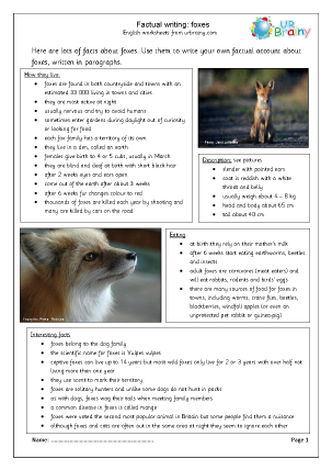 Preview of worksheet Foxes