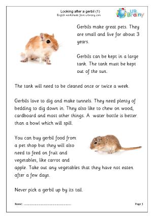 Preview of worksheet Gerbils 1