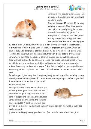 Preview of worksheet Gerbils 2