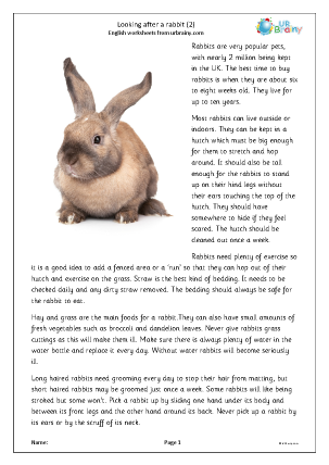 Preview of worksheet Rabbits 2