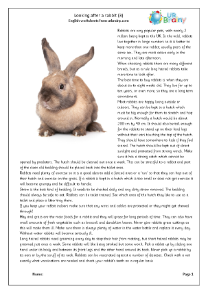 Preview of worksheet Rabbits 3