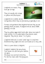 Ladybirds (1)