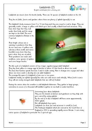 Preview of worksheet Ladybirds (2)