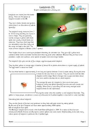 Preview of worksheet Ladybirds (3)
