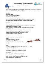 Minibeasts: garden black ants
