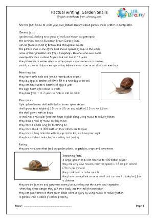 Minibeasts: garden snails
