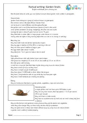 Minibeasts: garden snails