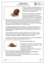 Garden snails (2)