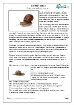Garden snails (3)