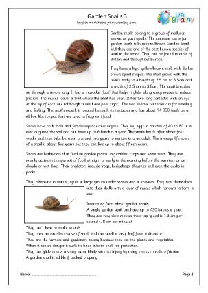 Preview of worksheet Garden snails (3)