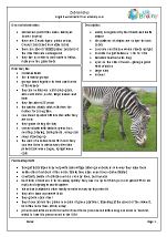 Zoo animals: zebras