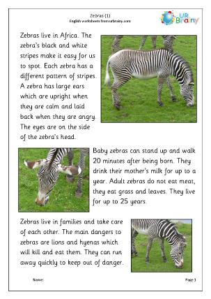 Preview of worksheet Zebra 1