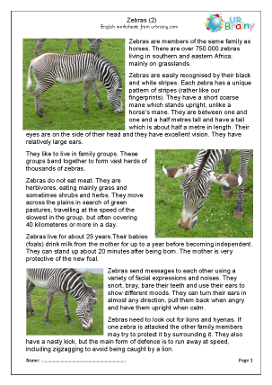Preview of worksheet Zebra 2