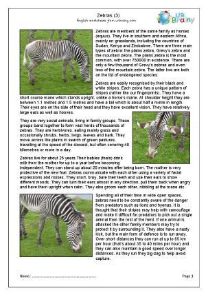 Preview of worksheet Zebra 3