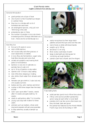 Zoo animals: giant pandas