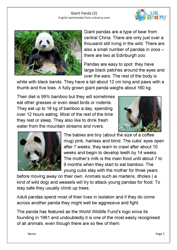 Preview of 'Giant panda 2'