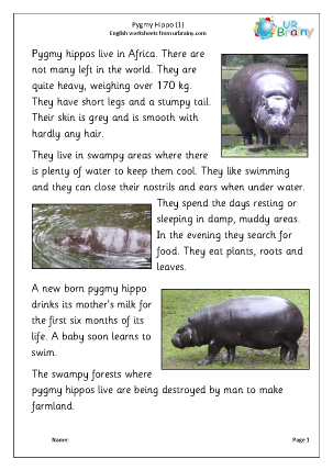 Preview of worksheet Pygmy hippo 1