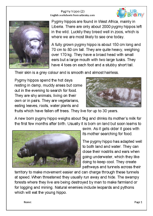 Preview of worksheet Pygmy Hippo 2