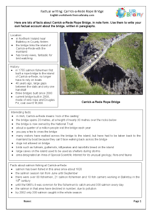Preview of worksheet Bridges: Carrick-a-Rede Rope Bridge factsheet