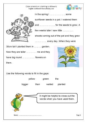 Cloze (easier)  planting sunflowers
