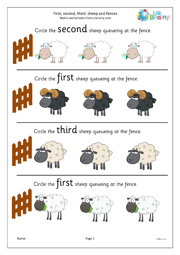 Preview of 'First second and third: sheep'