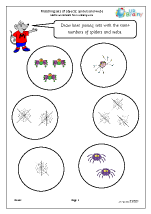 Matching objects: spiders and webs
