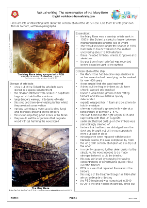 Mary Rose: conservation work factsheet