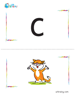 c-cat flashcard