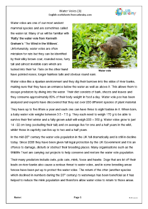 Preview of worksheet Water Voles (3)