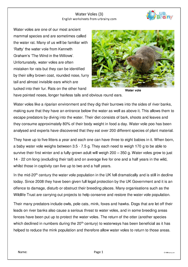 Preview of 'Water Voles (3)'
