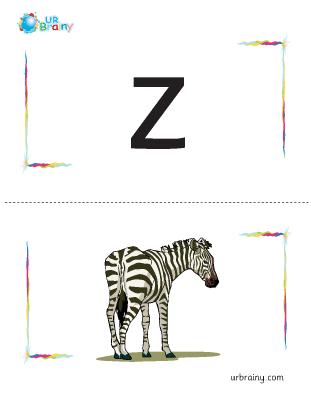 z-zebra flashcard