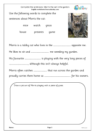 Complete the sentences: Morris the Cat in the garden