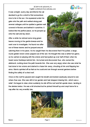 Preview of worksheet Allotment adventure of Morris the Cat