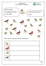 Tally chart: birds