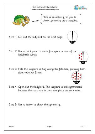 Preview of worksheet Symmetry activity: ladybird