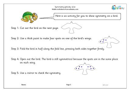 Preview of worksheet Symmetry activity: bird